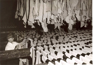 American leather tannery operations