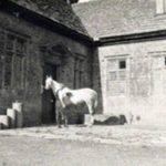 Door - Brympton d'Evercy 11th Cen England - 8030WI